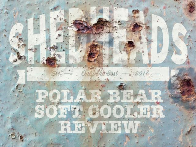 polar bear coolers