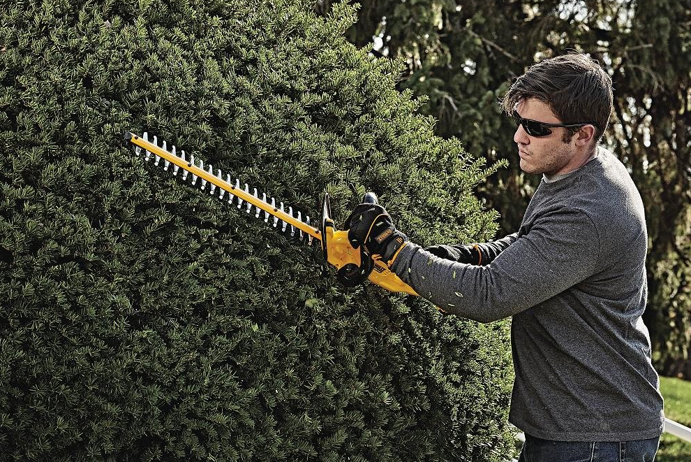 Dewalt 20V hedge trimmer